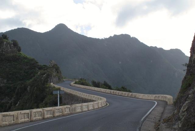 Gallotia galloti eisentrauti Anaga Tenerife