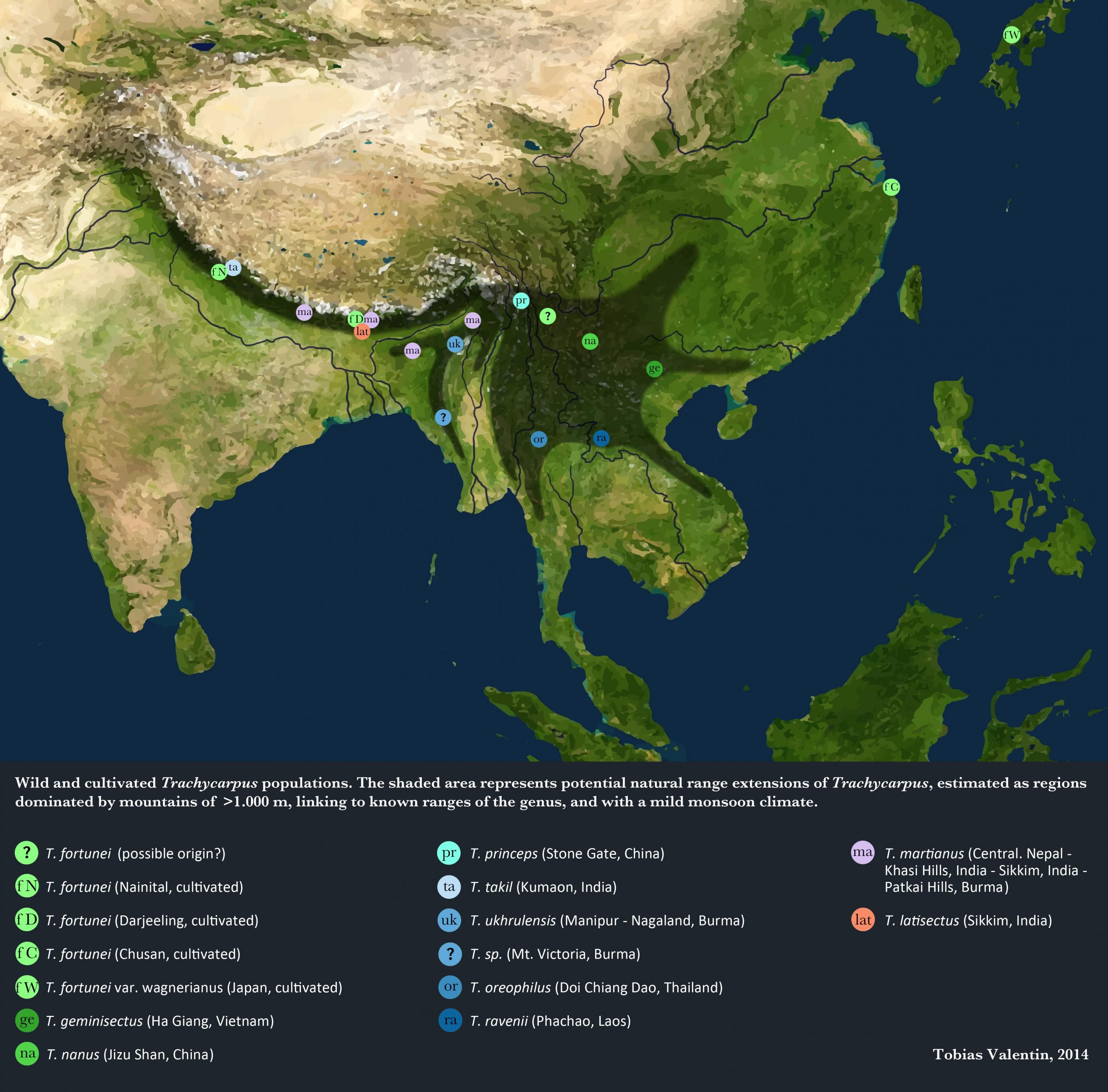 Trachycarpus range map.jpg